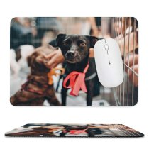 yanfind The Mouse Pad Dog Pet Apparel Pictures Strap PNG Den Images Pattern Design Stitched Edges Suitable for home office game