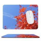 yanfind The Mouse Pad Tree Leaf Leaves Sky Flowering Plant Flower Autumn Stem Maple Pattern Design Stitched Edges Suitable for home office game