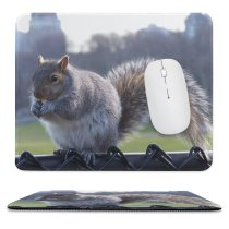 yanfind The Mouse Pad Central Tail Park Ground Fox Squirrel York Whiskers Wildlife Squirrels Snout Grey Pattern Design Stitched Edges Suitable for home office game