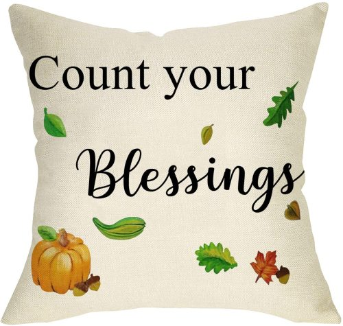 Yanfind Count Your Blessings Decorative Throw Pillow Cover, Farmhouse Quote Fall Pumpkin Cushion Case Seasonal Home Decorations Thanksgiving Square Pillowcase Autumn Decor for Sofa Couch 18 x 18 Inch