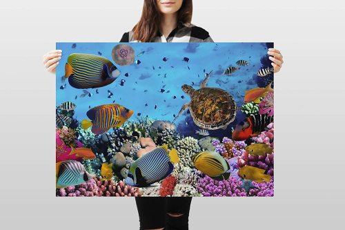 yanfind A1 | Tropical Coral Reef Poster Art Print 60 x 90cm 180gsm Ocean Fish