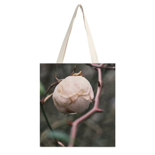 yanfind Great Martin Canvas Tote Bag Double Flower Plant Bud Sprout Austria Rose Feldkirch Leaves Ball Outdoors Close white-style1 38×41cm