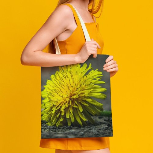 yanfind Great Martin Canvas Tote Bag Double Flower Plant Dandelion Spring Beauty Bloom Close white-style1 38×41cm
