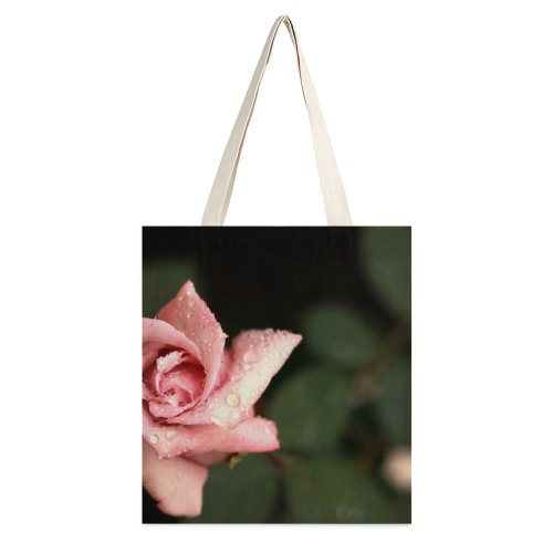yanfind Great Martin Canvas Tote Bag Double Flower Plant Rose Cambará Do Sul Rs Brasil white-style1 38×41cm