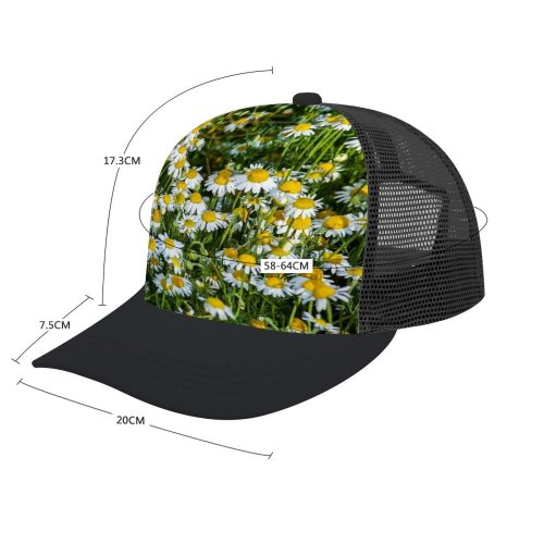 yanfind Adult Bend Rubber Baseball Hollow Out Москва Images Chamomile Ogorod Огород» Сад Flowers Aster Ботанический Plant Asteraceae Garden Beach,Tourism,Mountaineering,Sports, Parties,Cycling