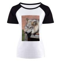 yanfind Women's Sleeve Raglan T Shirt Short Attentive Blurred Calm Comfort Creature Doghouse Ecosystem Fauna Fluff Fur Gaze Habitat