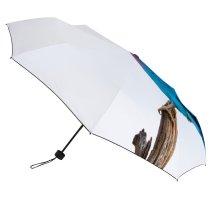 yanfind Umbrella Manual Space Africa Vertebrate Roller Perching Beauty Feather Talek Bird Structure Sky Portrait Windproof waterproof anti-ultraviolet protection golf umbrella