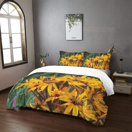 yanfind Bedding Set of 3 (1 Cover, 2 Bed Pillowcase Without Sheet)Bee Images Insect Petal Flowers Treasure Plant Asteraceae Pollen Stock Free Summer Duvet Cover personalization