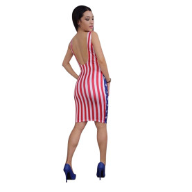 Backless American Stars And Stripes Independence Day Dress