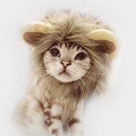 Pet Hat Cosplay Lion Mane Wig Ears Head Cap Warm Scarf Cat Puppy Costumes for Halloween Dress Up
