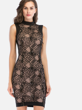 Embroidery Mesh Overlay Mock Neck Zip-Back Contrast Dress with Fringe Sequins