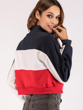 Half Zip Colour Block Cropped Sweatshirt with Graphic