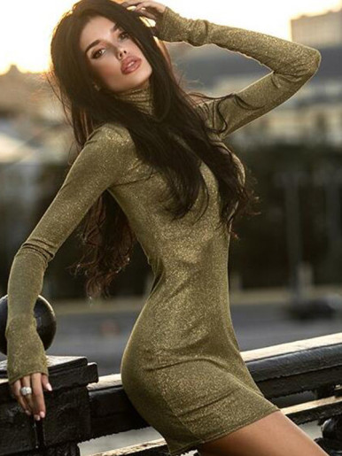 Long Sleeve Turtle Neck Metallic Dress