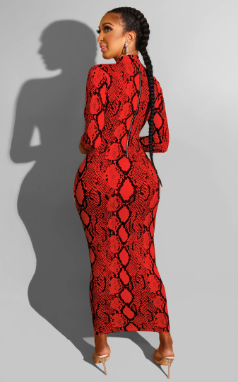Long Sleeve Maxi Dress In Snake with Zipper Back