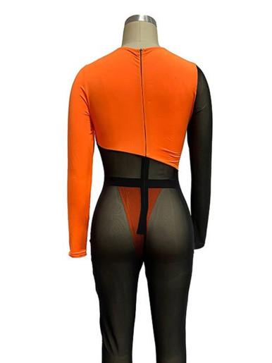 Mesh Contrast Panel Long Sleeve Women Jumpsuit