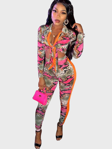 Snake Print Tie Top + Pant Women Set