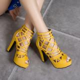 Arden Furtado Summer Fashion Women's Shoes Chunky Heels Zipper Sexy Mature Elegant pure color Cool boots Waterproof Sandals