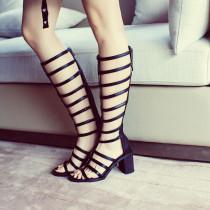 Arden Furtado Summer Fashion Trend Women's Shoes Chunky Heels Zipper Gladiator Sexy Elegant pure color Sandals Back zipper
