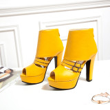 Arden Furtado Summer Fashion Trend Women's Shoes  Chunky Heels Zipper Sexy Elegant pure color Ladies Boots Cool boots Concise
