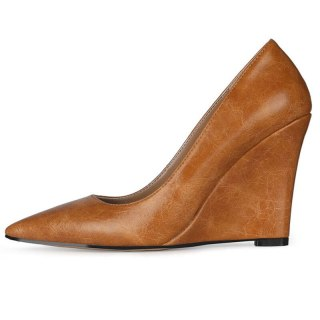 Arden Furtado 2021 Spring autumn Fashion Wedges Women's Shoes Elegant  Pointed Toe rainbow Pumps office lady shoes 43
