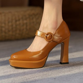Arden Furtado Spring Autumn Chunky Heels Buckle Sexy New Square Head Pumps Brown White High Heels 41 42