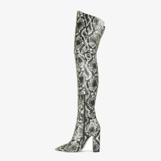 Arden Furtado Fashion Women's Shoes Winter  Sexy Serpentine Pointed Toe Chunky Heels  New Zipper Over The Knee High Boots 44 45