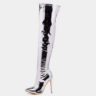 Arden Furtado Fashion Women's Shoes Winter  Sexy Silver  Pointed Toe  New Zipper Over The Knee High Boots