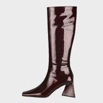 Arden Furtado 2021 Winter Fashion Boots Elegant Zipper Chunky Heels Block heels Slip on burgundy boots Square Head Ladies Shoes