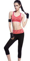 Tight Workout Gym Wears Pilates KL682070