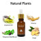 Sevich Care Hair Growth Essential Oils Authentic 20ml