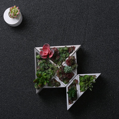 Concrete gypsum silicone mold Shimizu concrete Stereoscopic decoration Succulent plants Combined potted plant Creative platter Basin