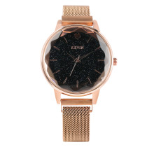 Kevin Brand Quartz Watch for Lady, Steel Belt Mesh Women's Gold Bracelet Watch, Star Scintillation Dial Girl Bracelet Watches