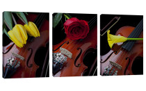 Amosi Art-RosesTulips and Violins of Canvas Paintings Wall Art  For Home Wall Decor with Stretched and Framed 3 Panels