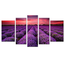 Amosi Art-5 Panels Wall Art Painting Landscape Lavender Flower Sea Picture Canvas Prints Artwork with Stretched and Framed  for Home Living Room Decoration