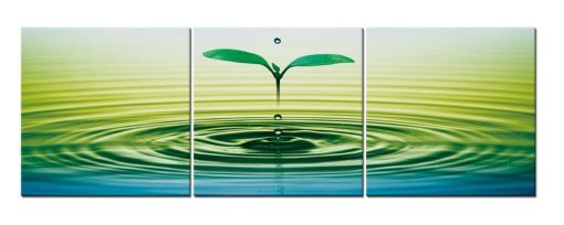 Amosi Art-3 Pieces Modern Canvas Painting Wall Art The Picture For Home Decoration Waterscape And Green Bud Water Wave Ripple Abstract Print On Canvas Giclee Artwork For Wall Decor
