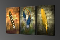 Amosi Art-Canvas Pictures HD Prints Wall Art 5 Pieces Three Style Indian Feathers Paintings Home Decor Color Feather Abstract Poster Frame
