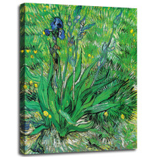 Canvas Wall Art Irises by Vincent Van Gogh Print on Canvas Ready to Hang