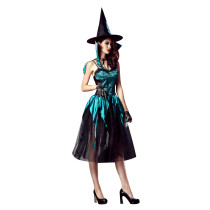 Amazing Evening Enchantress Halloween Witch Costume