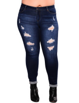 Royal Dark Blue Queen Size Ripped Pencil Jean Ankle Length Lady Pants
