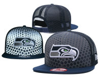 NFL Seattle Seahawks Snapback Hat (254)