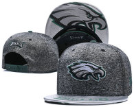 NFL Philadelphia Eagles Snapback Hat (164)