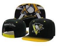 Pittsburgh Penguins Snapbacks 020
