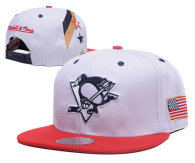 Pittsburgh Penguins Snapback Hat (15)