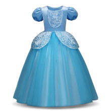 Kid Girl 3D Lace Embroidered Flowers Blue Royal Gown Dress Halloween Cinderella