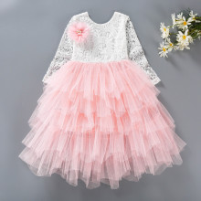 Kid Girl Hollow Lace Embroidery Flowers Layers Tutu Long Sleeve Dress