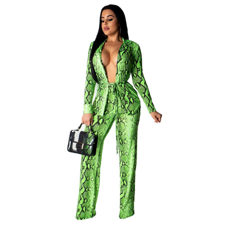 New Arrival Green Snake Print 2 Pieces Suits MDO9002