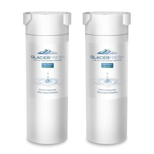 Replacement For GE XWF Refrigerator Water Filter 2-Pack
