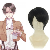 Rulercosplay Heat Resistant Fiber Inspired By Attack On Titan Levi Short Black Anime Wigs Wholesaler