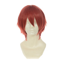 Rulercosplay LoveLive! Maki Nishikino Male Version Short Red Heat Resistant Fiber Cosplay Anime Wigs