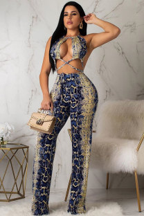 Dark Blue Sexy Fashion Asymmetrical Hollow Embroidery Backless Polyester Sleeveless Slip  AM761196